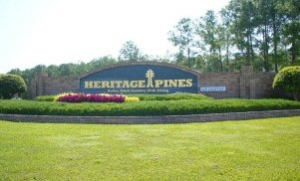 Homes For Sale In Heritage Pines Hudson FL