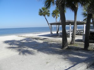 Homes For Sale In Gulf Harbors New Port Richey Fl